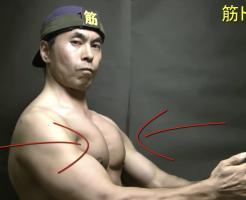 合掌トレーニング(横から見た図)